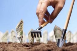 Kompensasjonsordninger for grøntprodusenter