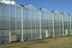 Karantene – informasjon til gartneri- og hagebruksbedrifter