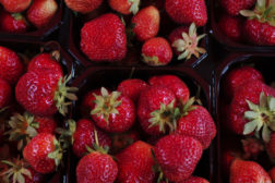 Norske jordbær i butikken